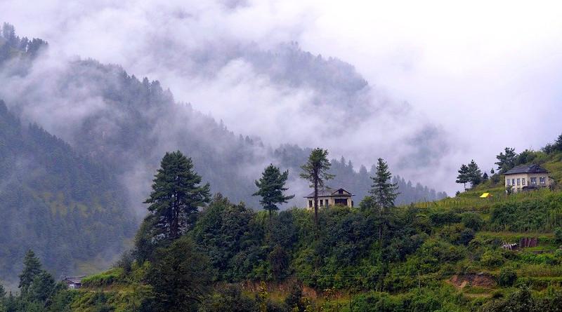 Nepal Forest Nature Trekking Mountains Landscape