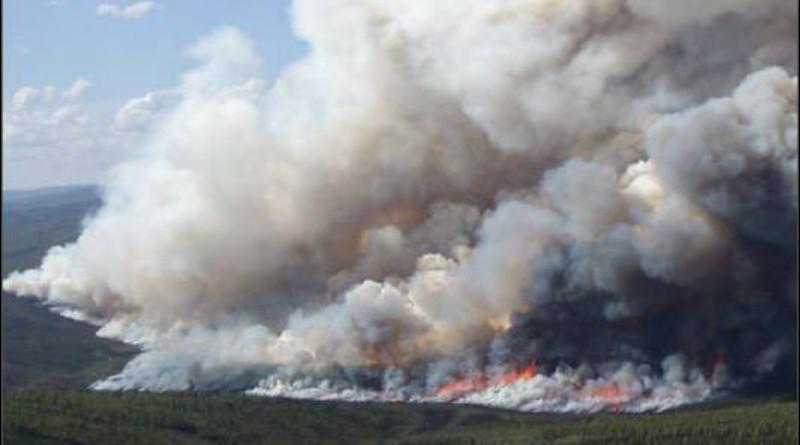 A wildfire burns in an Alaskan boreal forest. CREDIT: Merritt Turetsky