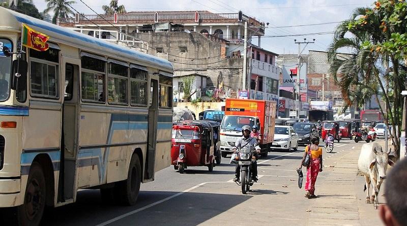 Cow Sri Lanka Road Human Traffic Tuk Tuk Auto Bus