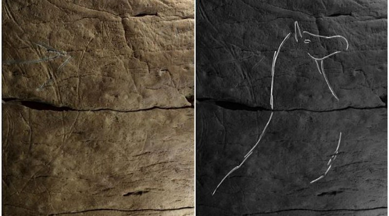 Photograph and tracing of horse B.II.1, engraved on the right-hand wall in Aitzbitarte Cave III (O. Rivero and D. Garate). CREDIT: Garate et al, 2020 (PLOS ONE, CC BY)
