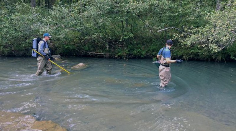 Researchers collected over 800 fin samples from smallmouth bass at 43 different sites in the Central Interior Highlands and analyzed the samples for genetic diversity. CREDIT: University of Missouri