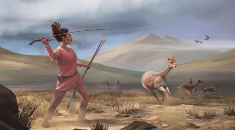 Illustration of female hunter depicting hunters who may have appeared in the Andes 9,000 years ago. CREDIT: Matthew Verdolivo, UC Davis IET Academic Technology Services