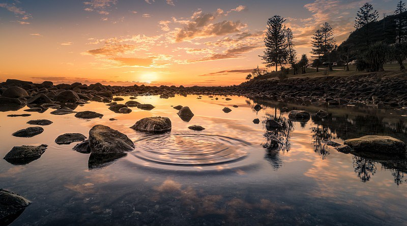 lake nature sunset