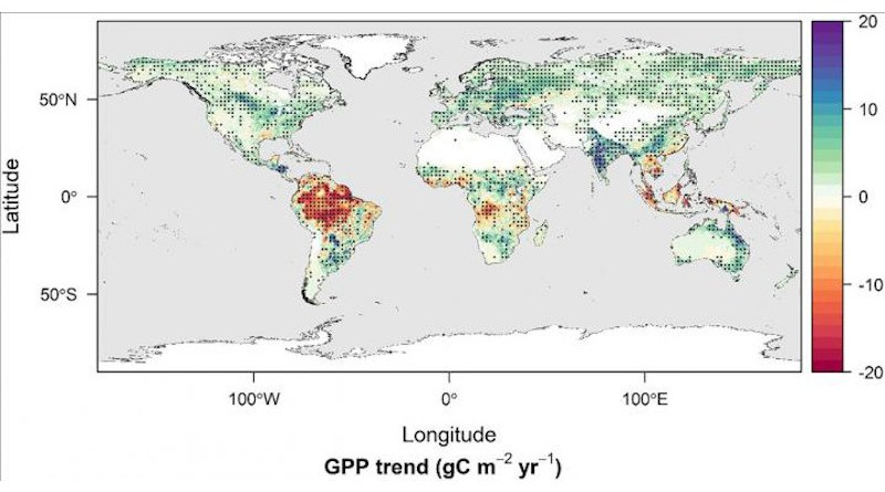 A map of the world shows the changes in global gross primary productivity (GPP), an indicator of carbon uptake, from 1982-2016. Each dot indicates a region with a statistically significant trend. CREDIT Credits: NASA/Nima Madani