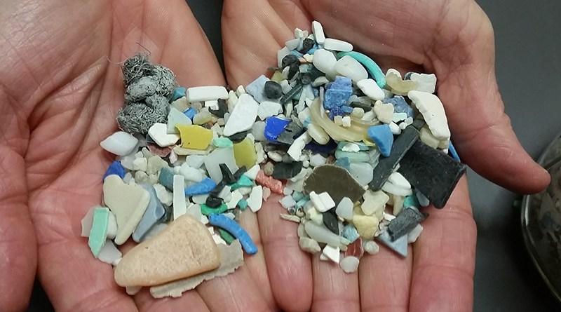 Examples of microplastics. Photo Credit: NOAA