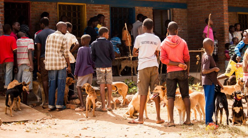 A vaccine station in Malawi - drop-in centre CREDIT Mission Rabies