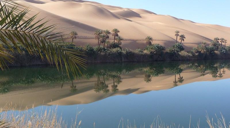 Sahara Oasis Libya Lake Rest Mirroring Desert Nature