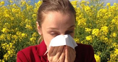 Sneeze Allergy Medical Allergic Allergen Health Medicine