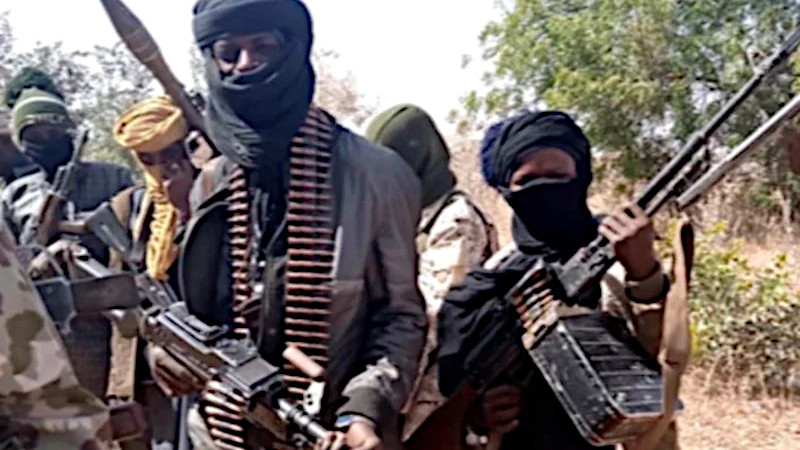 Boko Haram Teams Up With Bandits In Nigeria – Analysis