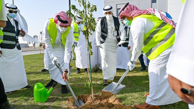 Saudi Arabia's Plans To Grow Forests In Desert Could Change The World – OpEd