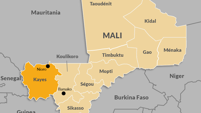 How Western Mali Could Become A Gold Mine For Terrorists – Analysis