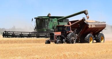 Farm Combine Harvester Tractor Hopper Harvest Wheat
