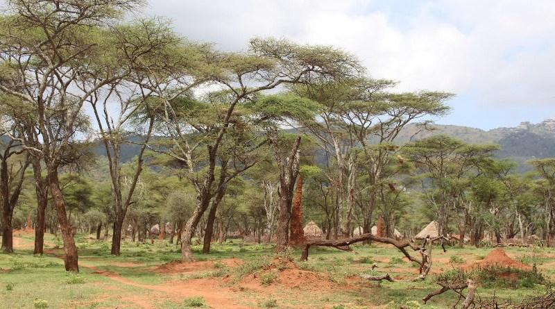 Ethiopia CREDIT Andrew Bladon