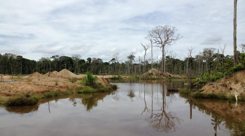 Most gold mines in the Peruvian Amazon are unregulated, small-scale operations, leaving governments without ways to protect the surrounding environment or track how much forest is lost to mining. CREDIT Photo courtesy of Lisa Naughton