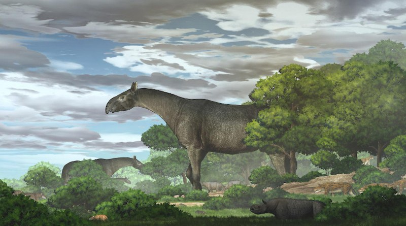 Ecological reconstruction of giant rhinos and their accompanying fauna in the Linxia Basin during the Oligocene CREDIT CHEN Yu