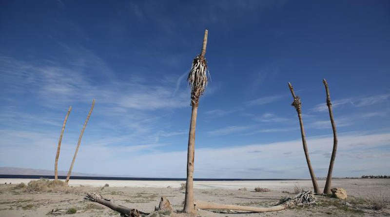 In recent decades, the Salton Sea has been undergoing a rapid retreat, causing increased exposure of dry lakebed. CREDIT Stan Lim, UC Riverside.