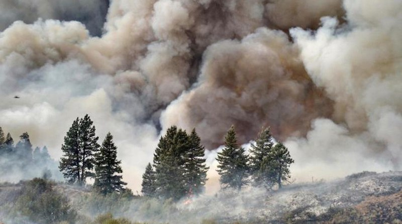 Wildfire smoke may greatly increase susceptibility to SARS-CoV-2, the virus that causes COVID-19, according to new research from the Center for Genomic Medicine at the Desert Research Institute, Washoe County Health District, and Renown Health in Reno, Nev. CREDIT U.S. Department of Agriculture