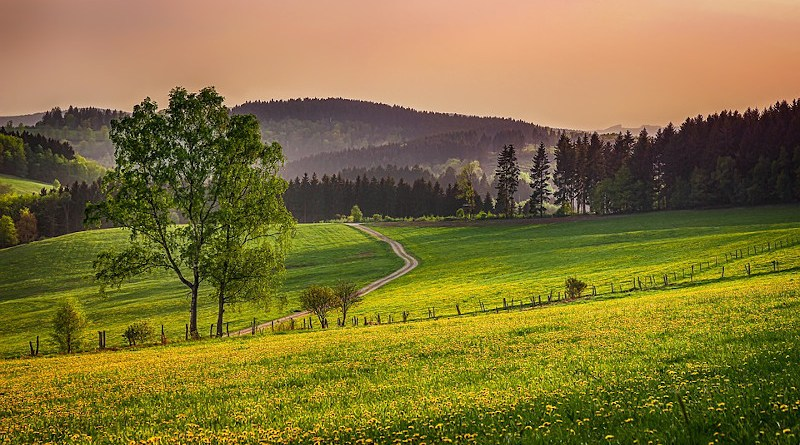 Sauerland Germany Landscape Nature