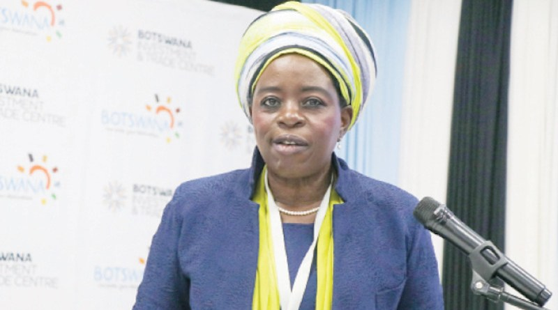 Zimbabwe's Industry and Commerce Minister Dr Sekai Nzenza (Photo supplied)