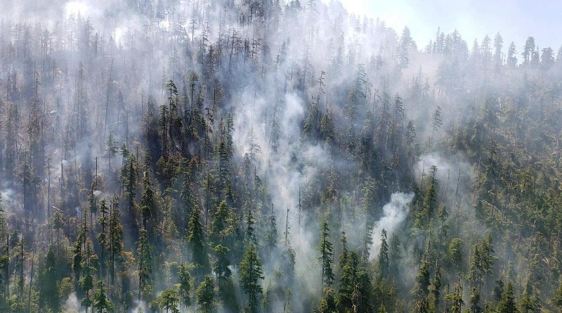 Beachie Creek fire 2020 when it was still small. CREDIT (Photo by James Johnston, OSU College of Forestry)