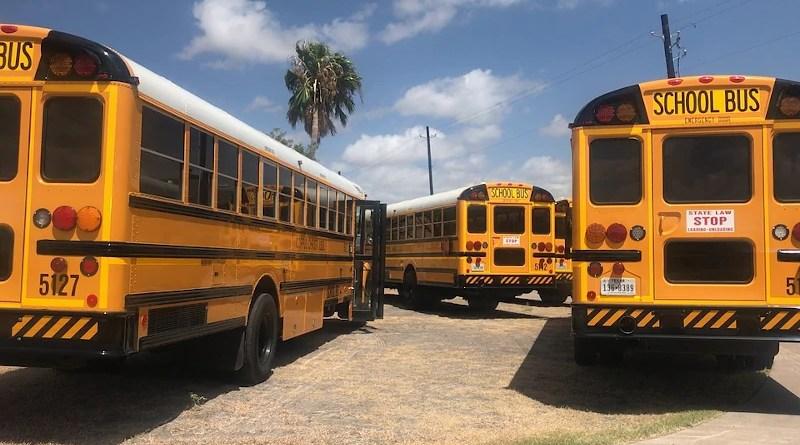 Bus School School Bus Education Transportation