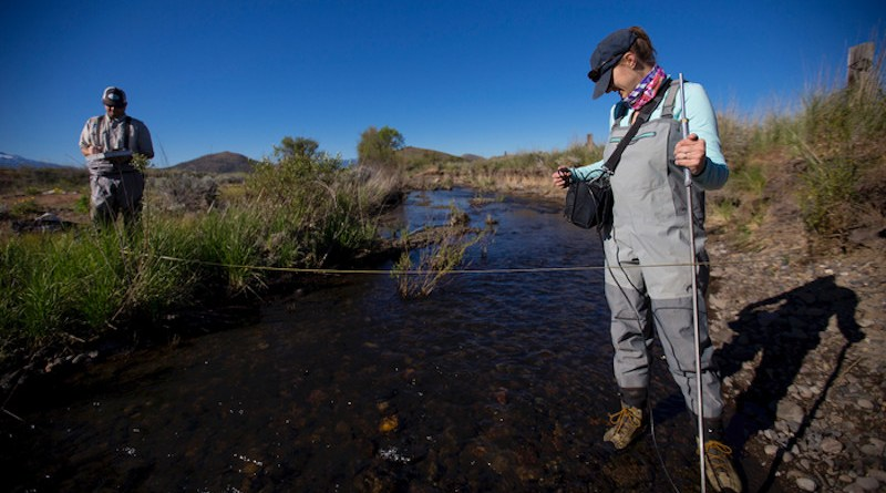 Ann Willis, a researcher with the UC Davis Center for Watershed Sciences, takes measurements on the Little Shasta River with colleague Rob Lusardi in 2017. CREDIT: Joe Proudman/UC Davis