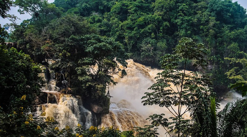 Rainforest Falls Water Forest Jungle Cascade Flow Congo