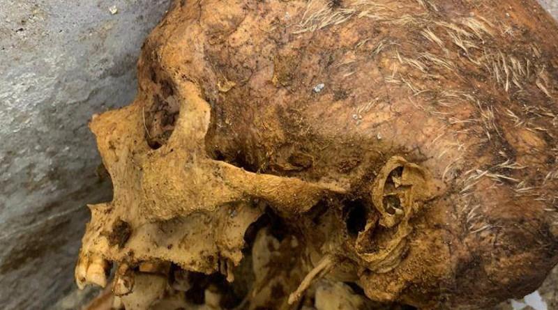 Skull of Marcus Venerius Secundio. Photo Credit: Pompeii Archaeological Park Press Office