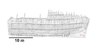 Drawing of the Mary Rose CREDIT: Jensen et al./Matter