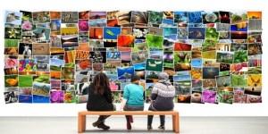 banci cultura e partecipazione