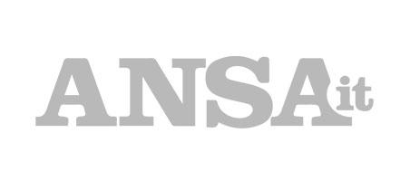 Logo Partner Ansa.it
