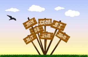 dessin représentant des pancartes portant des noms de domaine