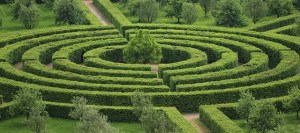 photo d'un labyrinthe de verdure
