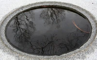 Quels ouvrages pourrais-je consulter pour avoir des renseignements sur le mouvement / concept japonais Wabi sabi ?