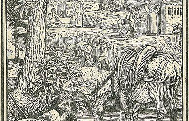 J'aimerais partir sur les pas de Stevenson dans les Cévennes avec un âne. Auriez-vous des livres, sites, docs à me proposer pour préparer mon voyage ?
