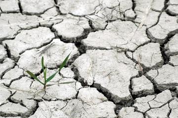 Les ressources naturelles sont-elles infinies ?