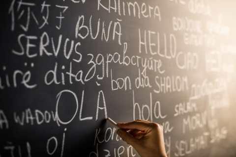 linguas mais estudadas