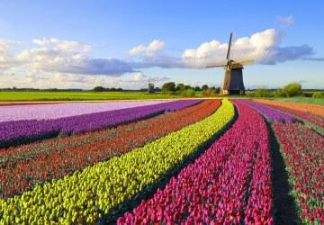 Tudo sobre a Holanda