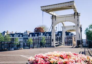 jardins em volta dos contentores de lixo em Amsterdam