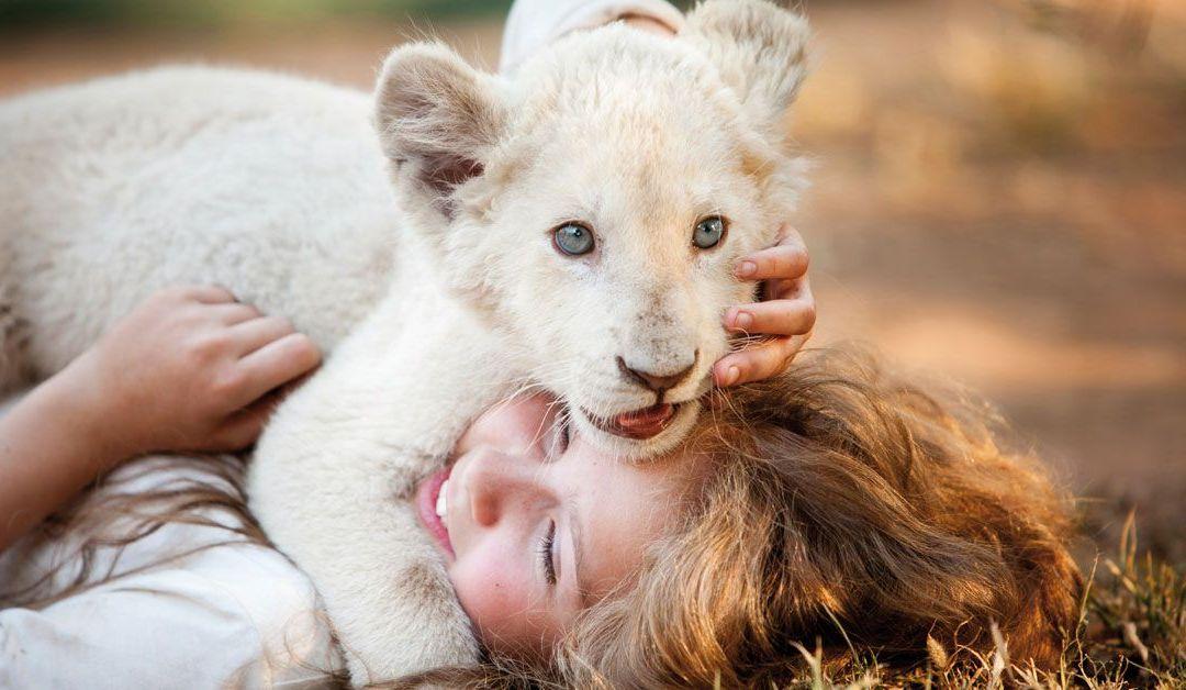 Estrenos: Mia y el león blanco, lágrimas de emoción
