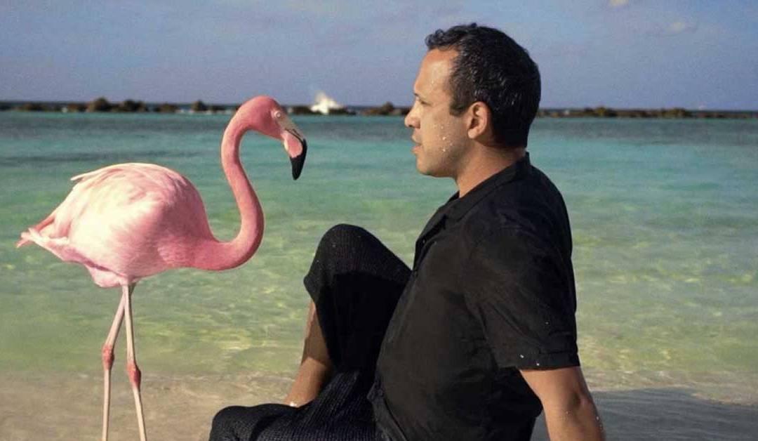 Estrenos imperdibles: The mystery of the Pink Flamingo, Anatomía de un Dandy, Ondina y De Gaulle