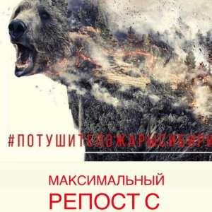 A szívem Szibériában ég!