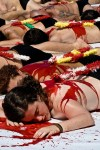 Spanish Bullfighting Protesters