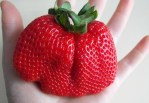 Is that a Strawberry?