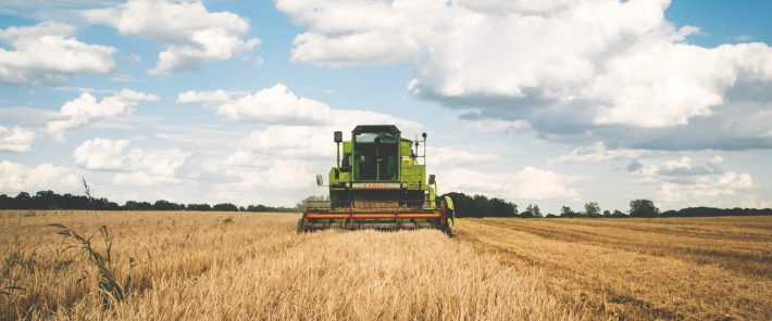 Farming still associated with poverty in half of EU countries