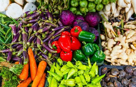 How to feed 10 billion people without destabilising the planet
