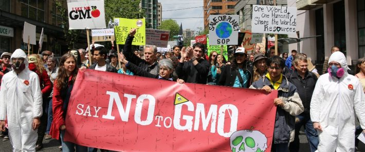 Do extreme opponents of genetically modified foods know all the facts?