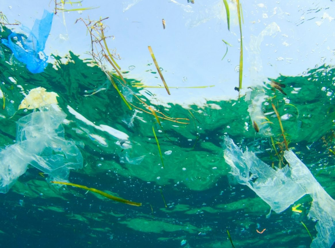 Can a floating trash collector tackle plastic pollution in the Pacific?