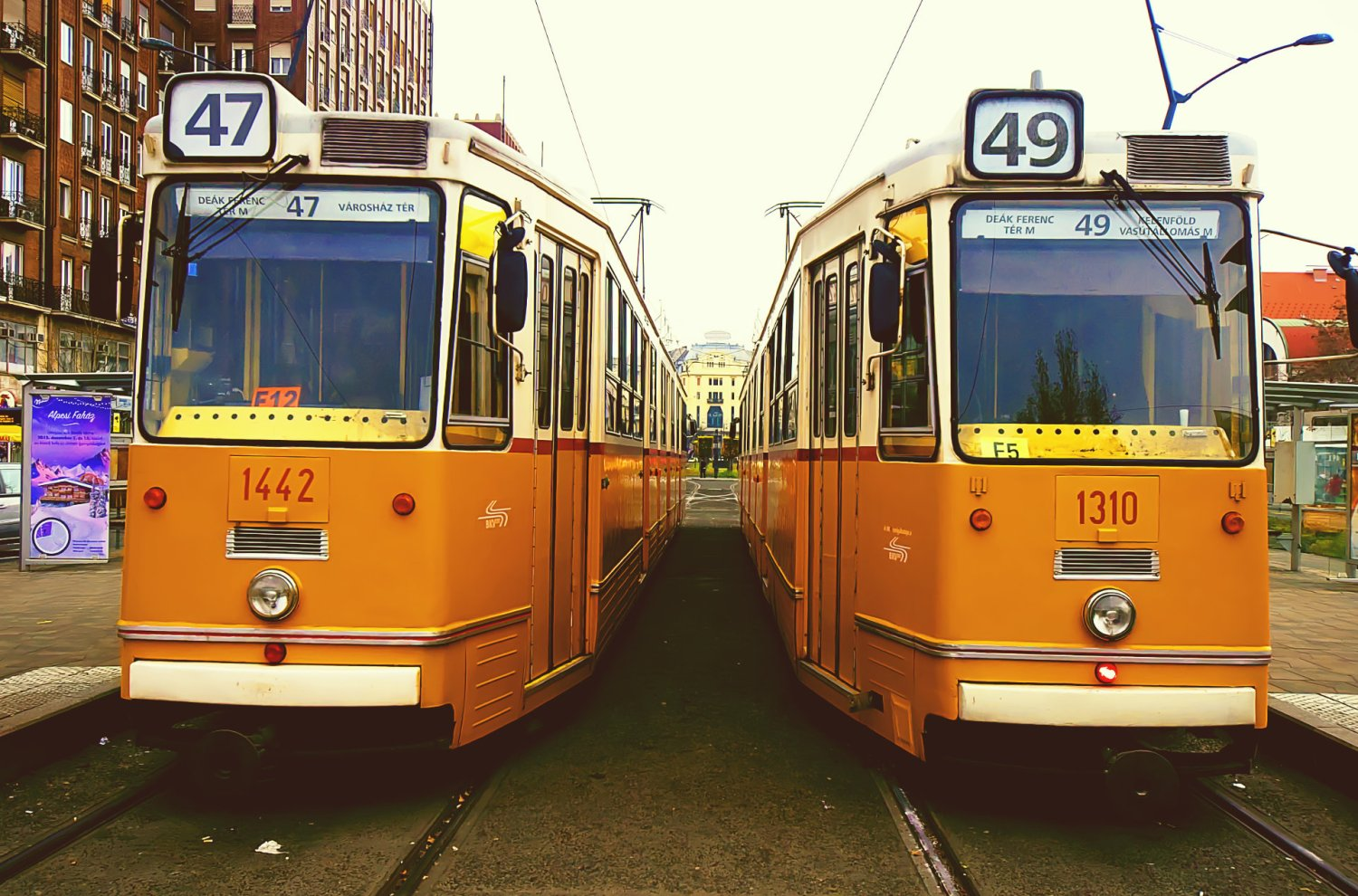 Two Ganz Trams waiting at a station in Budapest