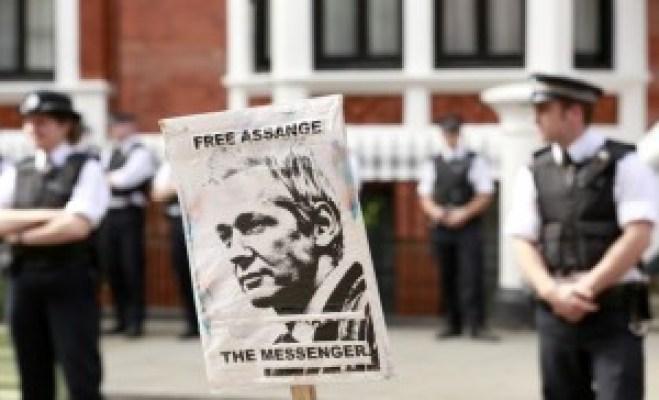Assangeinsert